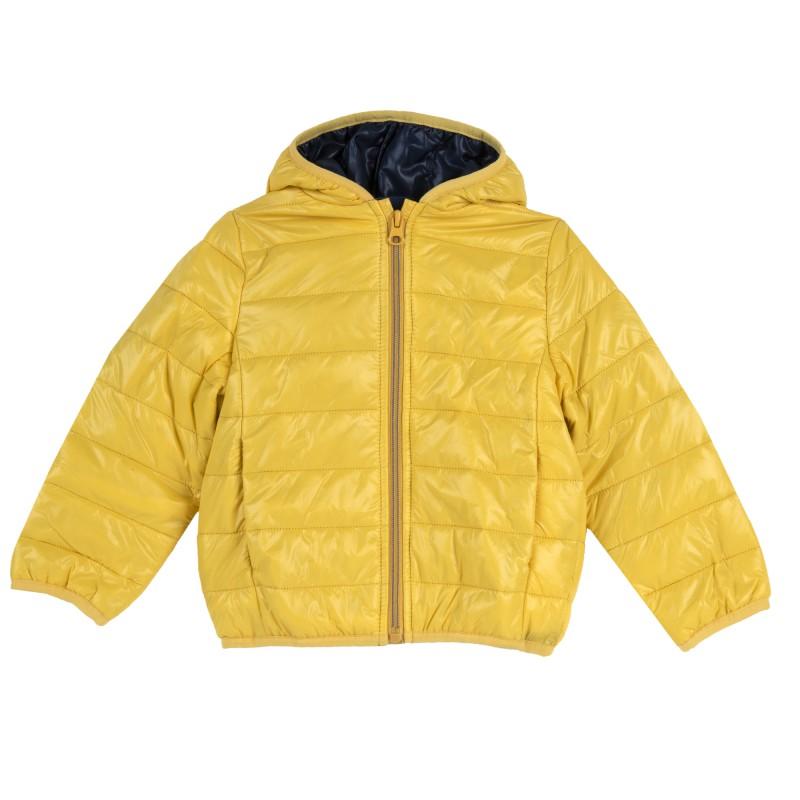Spring yellow jacket